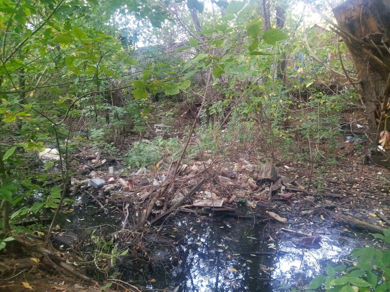 Еще три реки будут очищены в Нижегородской области - фото 2